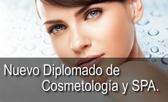 Formación en cosmetologia, tratamientos faciales, como anti envejecimiento, contorno de ojos acne, y las principales tecnicas de masaje en Spas como masaje relajante, masaje reductivo, y tecnicas corporales.